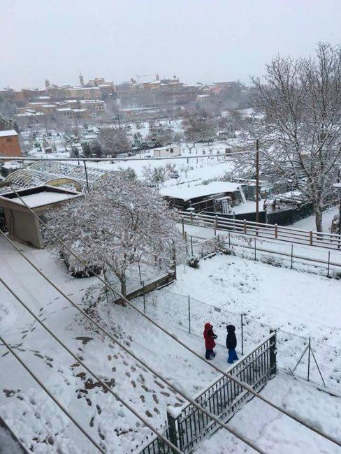 neve-tolentino-4-488x650