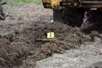 scavi-ritrovamento-ossa-scientifica-porto-recanati-FDM-12-325x217