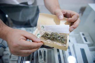CannabisLegale_FF-3-325x217