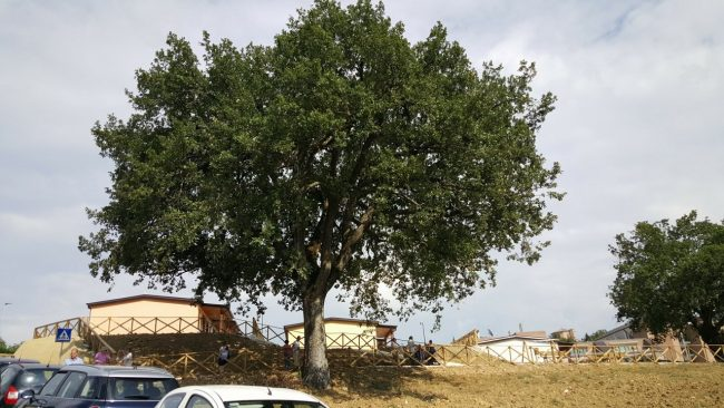 camerino-area-sae-san-paolo-12-650x366