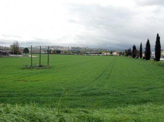 Piediripa_Simonetti-1-450×337