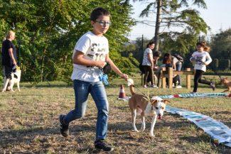 nuova-area-sgambamento-cani-dog-park-cuore-adriatico-civitanova-FDM-16-325x217