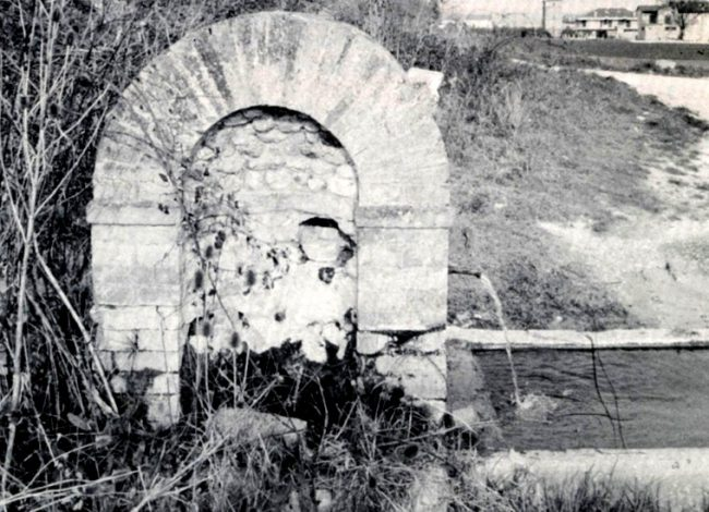 thumbnail_FONTE-MOSCARDINA-IN-UNA-FOTO-DI-GABOR-BONIFAZI-DEL-1983-650x470