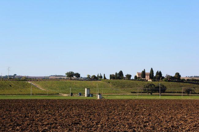 Giro-delle-Fonti-di-Macerata-25-650x433