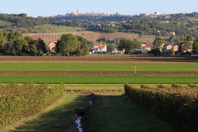 Giro-delle-Fonti-di-Macerata-5-650x433