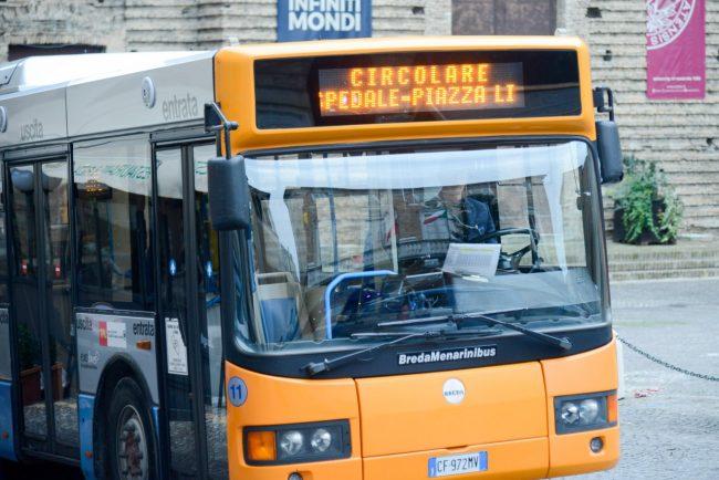 CircolareC_Autobus_FF-2-650x434
