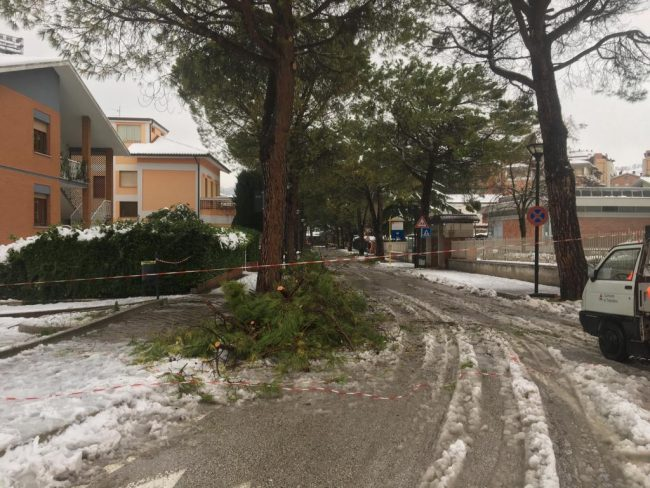 tolentino-neve-7-650x488