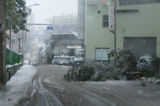 tolentino-neve-Francesca-Marsii-2-650x433