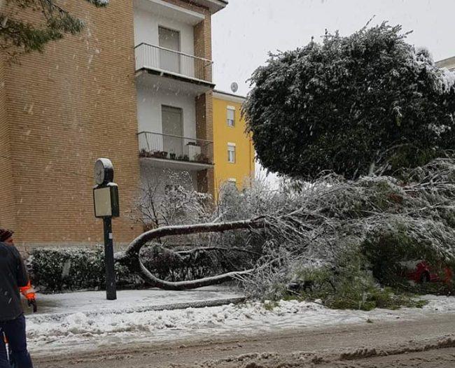 tolentino-neve-Francesca-Marsili-4-e1545046134677-650x526