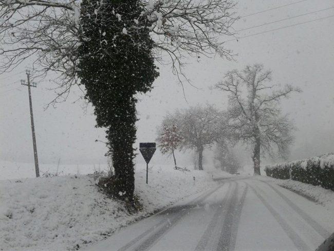 neve-22-gennaio-2019-3-650x488
