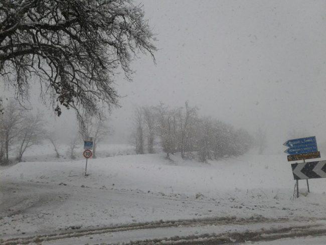 neve-22-gennaio-2019-4-650x488