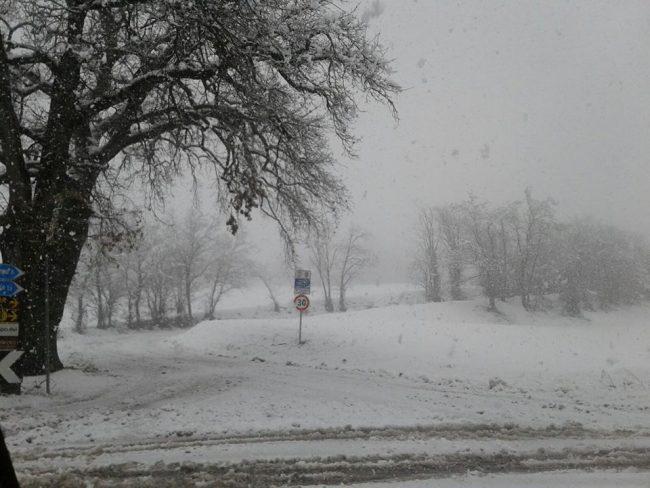 neve-22-gennaio-2019-5-650x488