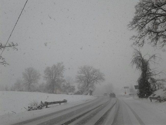neve-22-gennaio-2019-6-650x488