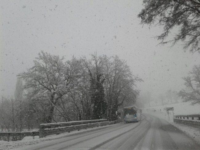 neve-22-gennaio-2019-7-650x488