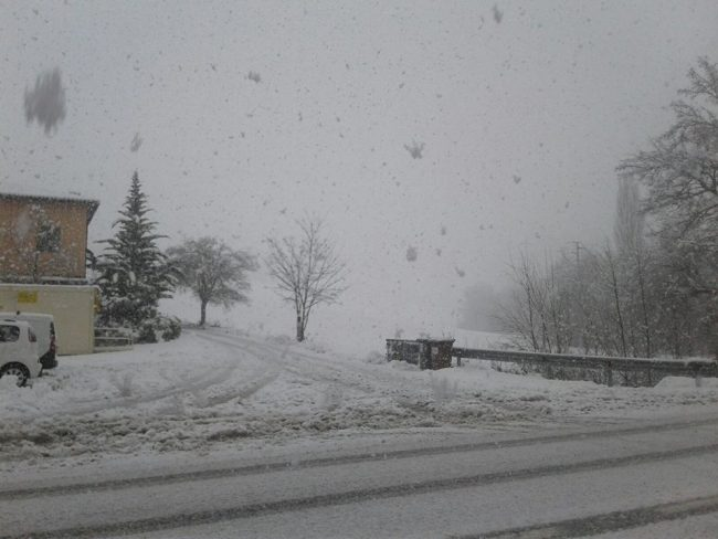 neve-22-gennaio-2019-8-650x488