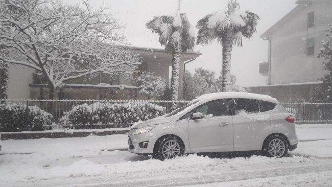 neve-colmurano-22-gennaio-foto-mario-lambertucci1-650x366