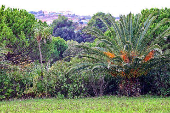 parcho-dei-laghetti-ppp-foto-twinssebastiani-3-650x433