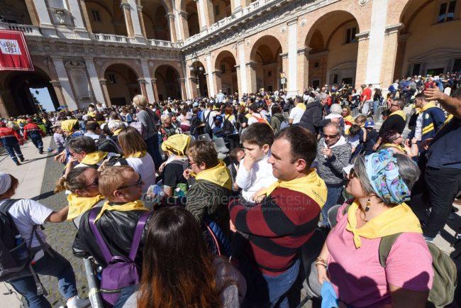 papa-francesco-piazza-santa-casa-basilica-loreto-FDM-22-650x434