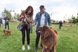dog-park-parco-cecchetti-civitanova-FDM-2-325x217