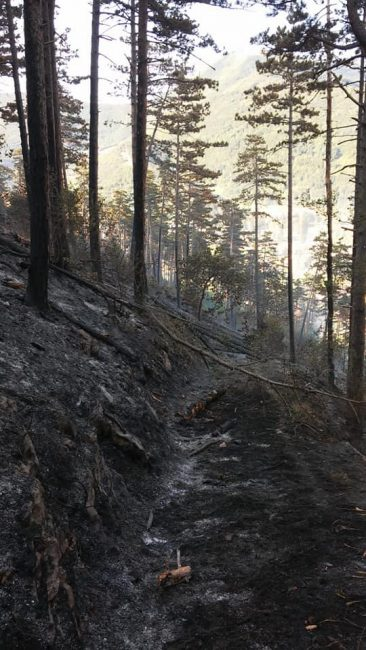 incendio-fiuminata-orpiano