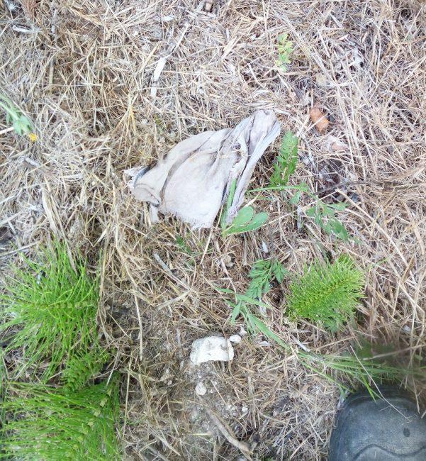 Degrado-contrada-Vallebona-cimitero-3-e1564756574765-601x650