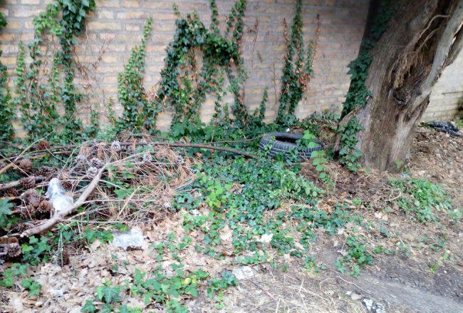 Degrado-contrada-Vallebona-cimitero-7-e1564756631464-650x439