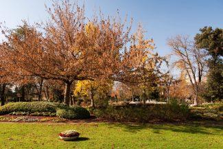 Parco_Giardini-Diaz-1-325x217