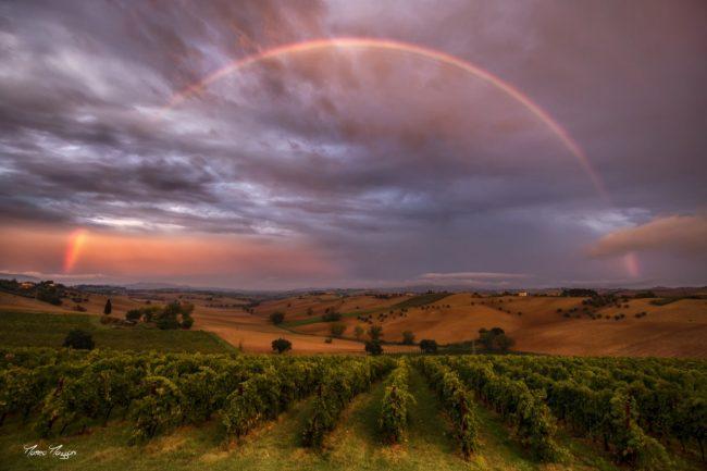 arcobaleno_matteo_mazzoni