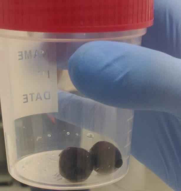 pusher-ingoia-ovuli-1-e1568899748110-614x650