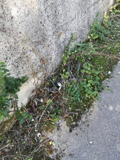 Lo-stato-di-abbandono-e-di-sporcizia-di-via-Paladini-zona-parcheggio-Sferisterio-2-488x650