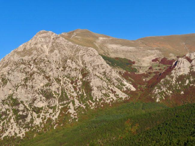 foliage-di-frontignano-17-650x488