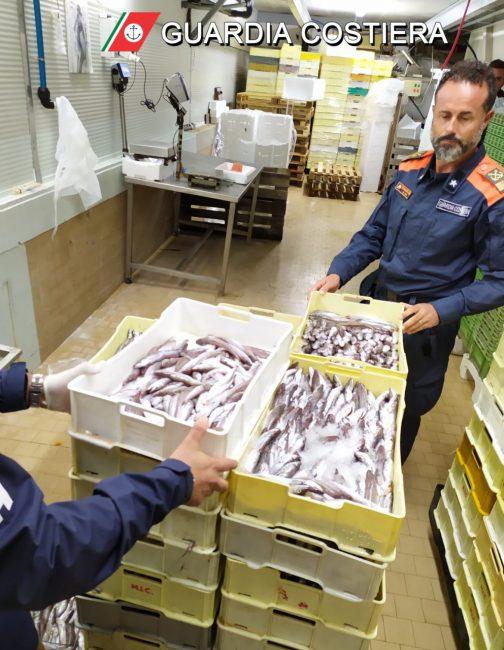 sequestro-253-chili-pesce-guardia-costiera-1-504x650