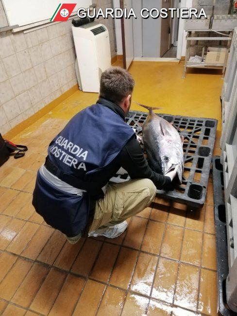 sequestro-253-chili-pesce-guardia-costiera-2-488x650