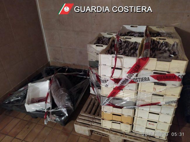 sequestro-253-chili-pesce-guardia-costiera-6-650x488