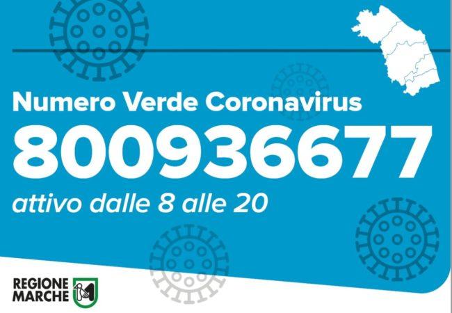coronavirus-numero-verde