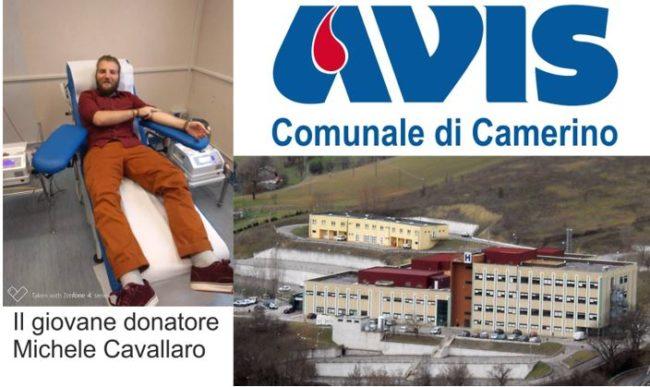 avis_camerino_michele_cavallaro