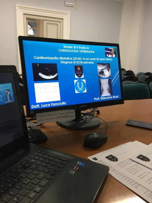 cardiologia-veterinaria-3-488x650