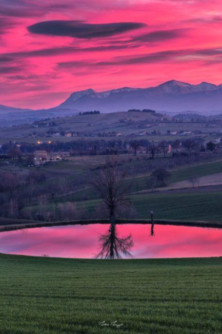 foto_quarantena_matteo_mazzoni-16-433x650