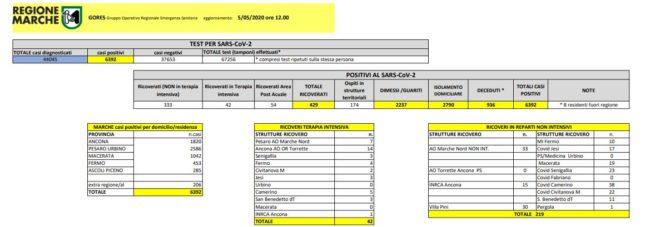 gores-giallo-5-05-650x227