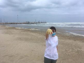 MAR03_AN_Senigallia_Spiaggia-30m-sud-foce-fiume-Misa-3-325x244