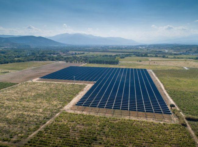 vigna-fotovoltaica-3-650x484