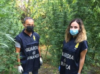 sequestro 70 kg marijuana corridonia (1)