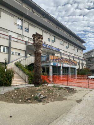ospedale-tolentino-1-300x400