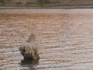Statua Lago di Cingoli