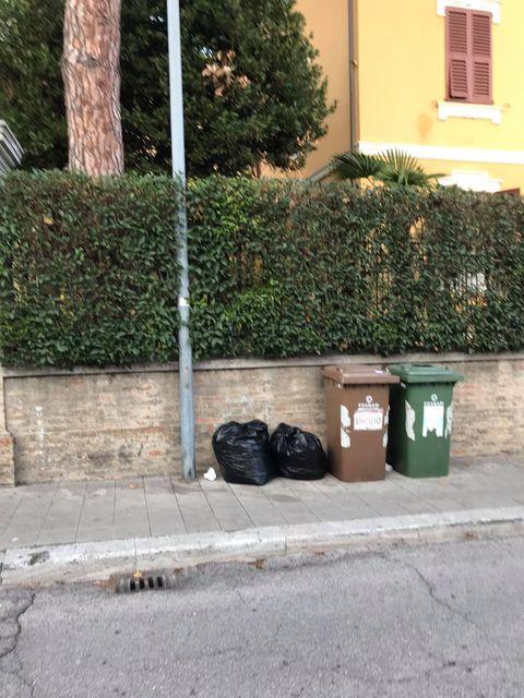 rifiuti-immondizia-macerata-6