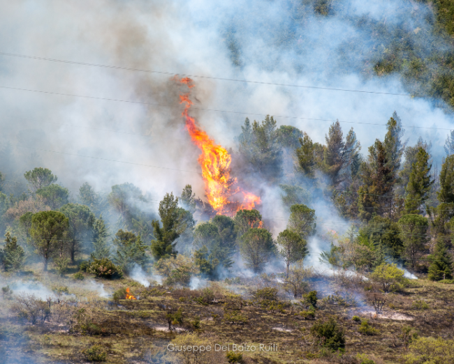 Incendio-Valcimarra-Caldarola-4-650x522