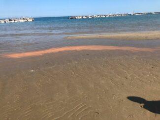 mar-rosso-litorale-nord-civitanova-4-325x244