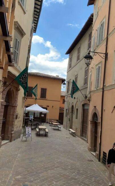 camerino-drappi-centro-terzieri-3-404x650