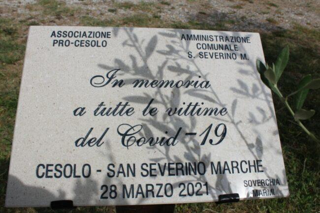 Commemorazione-Cesolo2-650x433