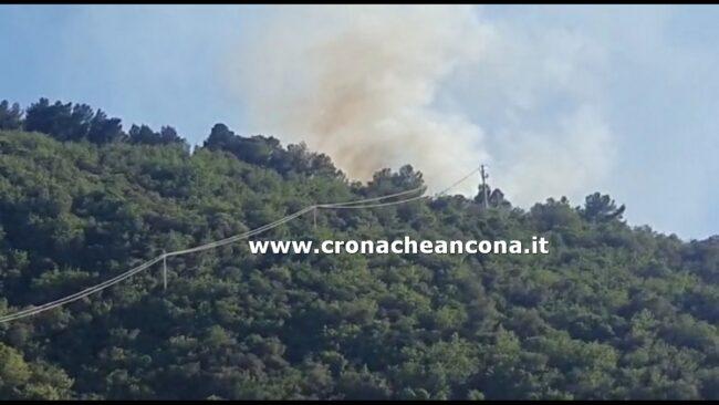 incendio-emilia-1-650x366